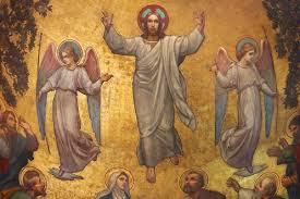 Homélie de la Fête de l'Ascension : Jeudi 21 mai 2020